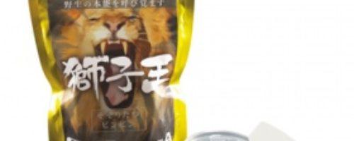 獅子王 男性用クリーム 10g