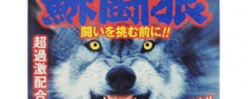 蘇闘狼カプセル 2粒パック(そとうろう)